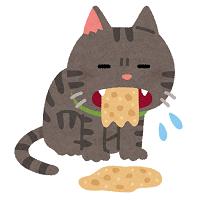 Pet_cat_haku_outo_2